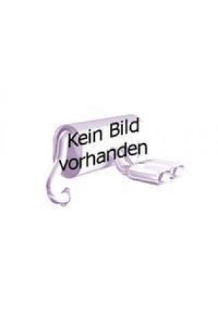 GESTEC Sportauspuff Endschalldämpfer für VW Polo 9N GTI Cup Edition 2 x 76mm eingerollt gerade mit Absorber