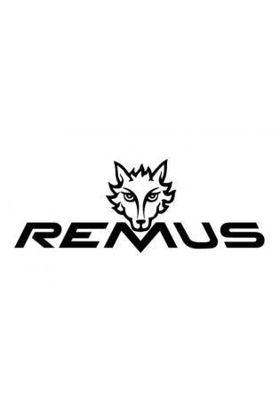 Remus Sportauspuff Mittelschalldämpfer Audi RS6 C8 RS7 4K