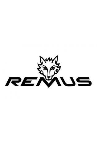 Remus Sportauspuff Vorschalldämpfer Ersatzrohr VW Polo 6 Typ AW 2.0l TSI ab Bj. 2019